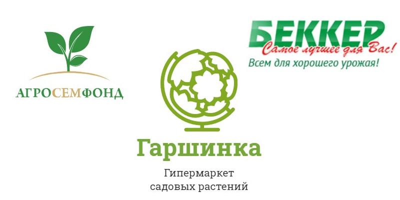 ТОП 3 онлайн магазина семян с доставкой по почте