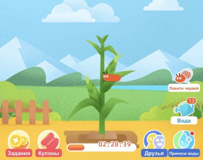 Игра волшебный сад в которой можно зарабатывать монеты на алиэкспресс